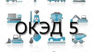 Справочник кодов ОКЭД в Казахстане