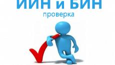 Проверка ИИН (БИН) на корректность — информация по ИИН (БИН)