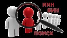 Поиск организации (ИП) по БИН (ИИН)