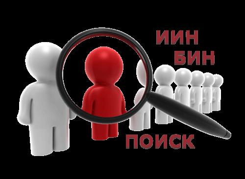 Поиск организации (ИП) по ИИН (БИН) в Казахстане
